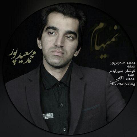 دانلود آهنگ نمیهام با صدای محمد سعیدپور